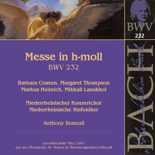 131 2008-bachhmoll